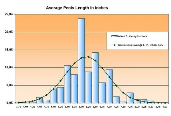 Penis Size and Shape